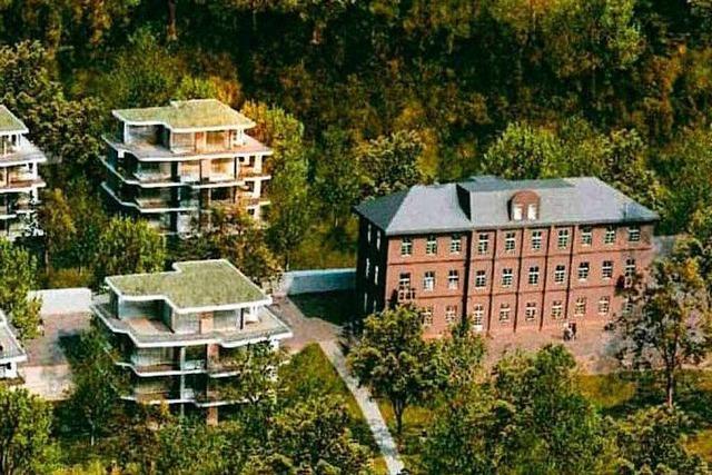 Kompromiss bei der Bebauung Altenberg: weniger Geschosse, breitere Bauten