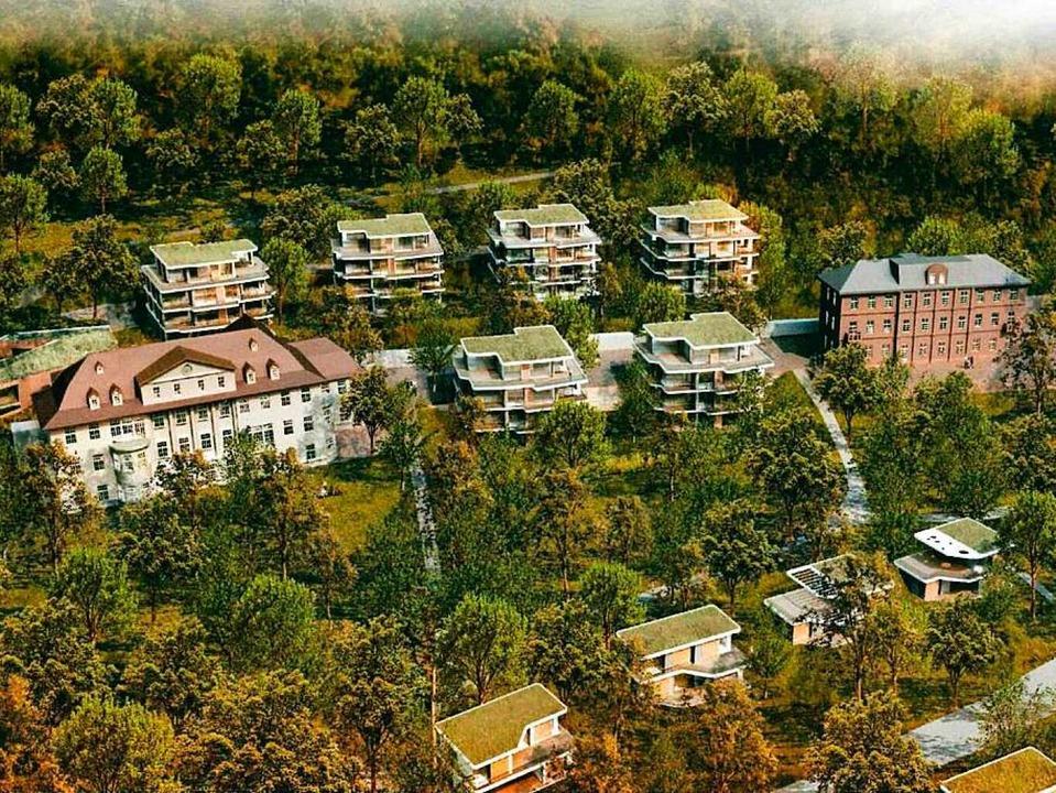Die Neubauten zwischen Thaederhaus und Reichswaisenhaus sollen niedriger werden.  | Foto: Stadt Lahr