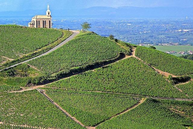 Lyon, Dijon und das Weingebiet Beaujolais