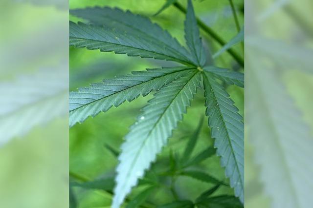 Drogenkurier wird auf Bewährung verurteilt