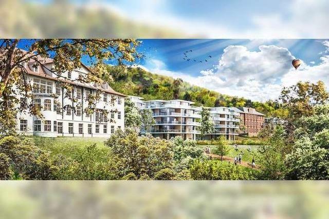 Bürgerinitiative: Geplante Altenberg-Bebauung bleibt zu massiv