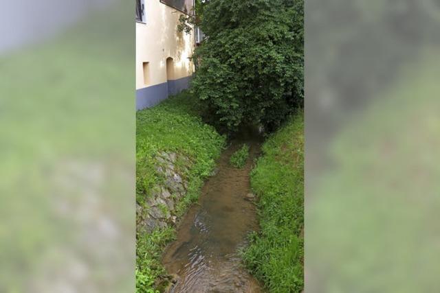 Der langwierige Hochwasserschutz
