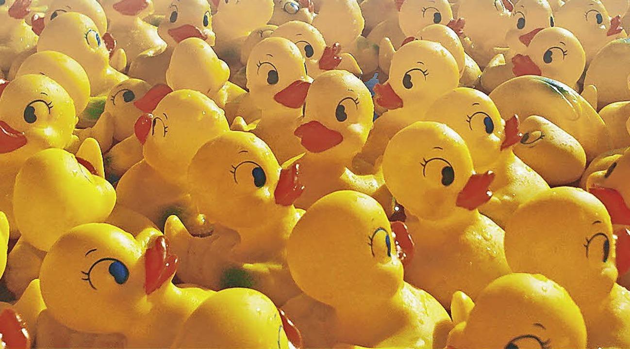 Eine Ente gibt es schon für fünf Euro.   | Foto: BZ