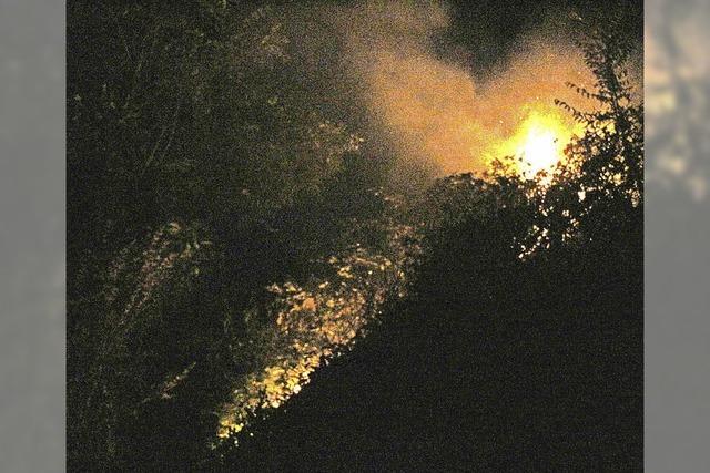Rebböschung in Flammen