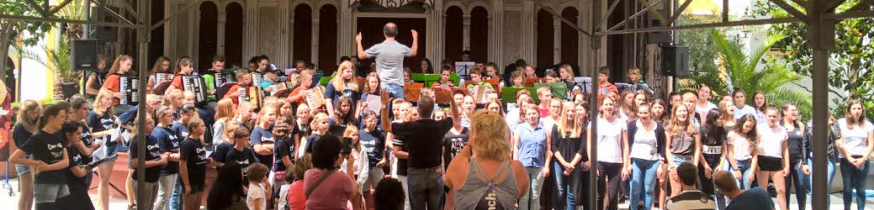 Das Projektorchester bei seinem Auftritt im Europa-Park   | Foto: Jugendmusikschule