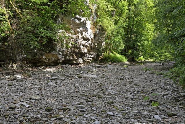 Flussbett ist ausgetrocknet