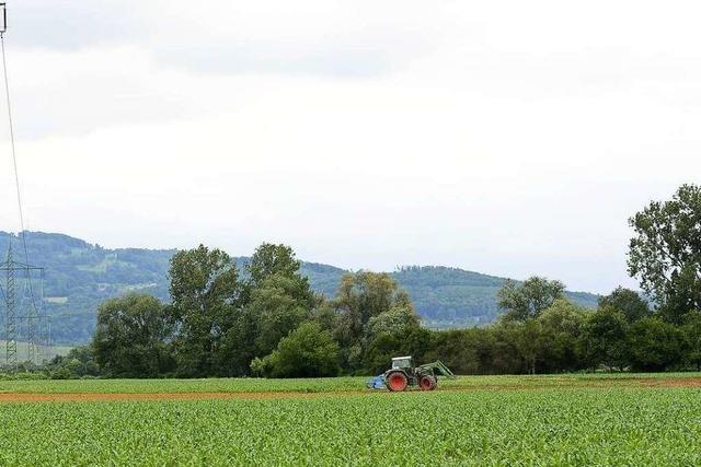 Treibt der geplante Stadtteil Dietenbach die Preise für Ackerland hoch?