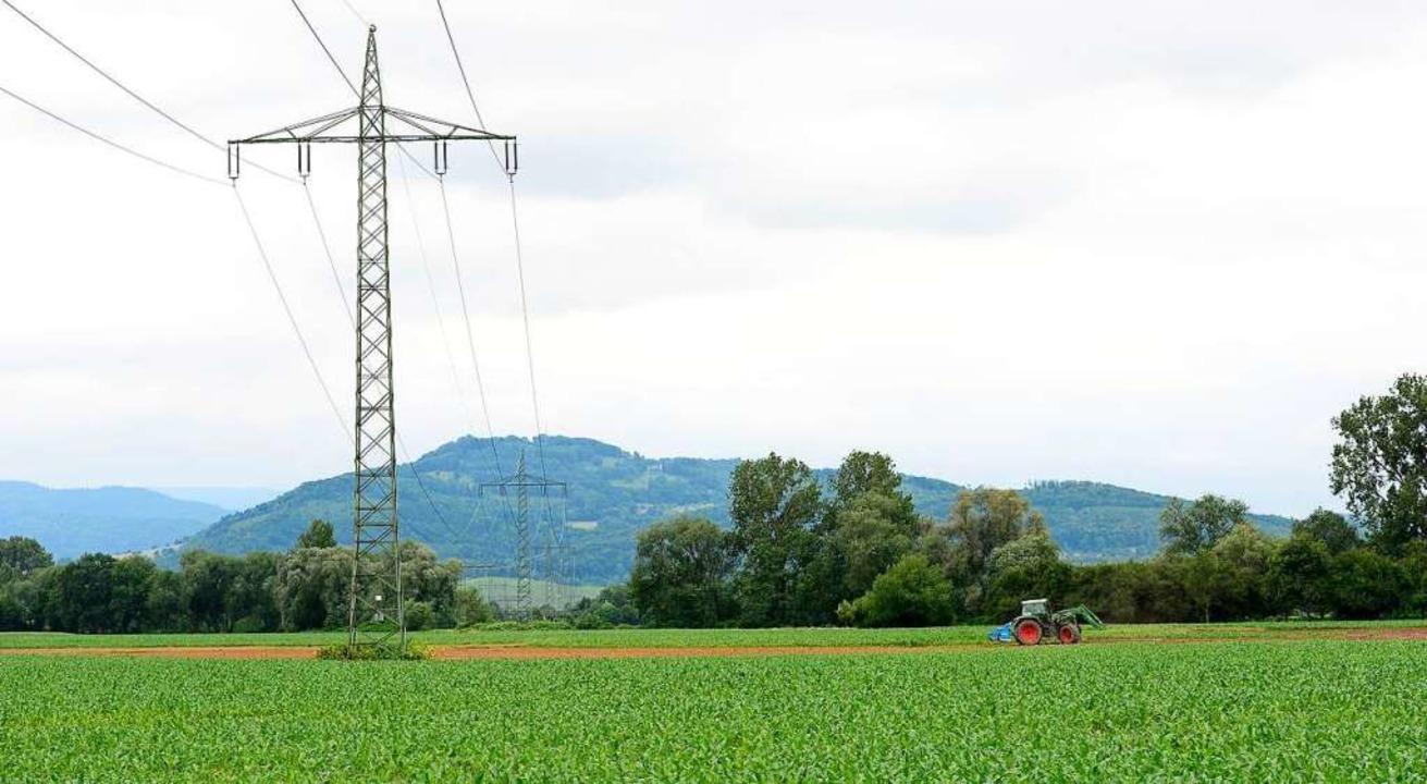 Bauern beklagen, dass in Freiburg die Preise für Ackerland gestiegen sind.  | Foto: Ingo Schneider