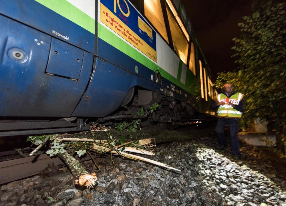Bei Landwasser sprang ein Zug der Breisgau-S-Bahn aus dem Gleis.    Foto: Patrick Seeger
