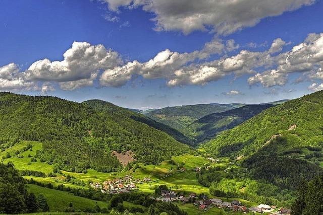 Veranstaltungsreihe im Biosphärengebiet Südschwarzwald