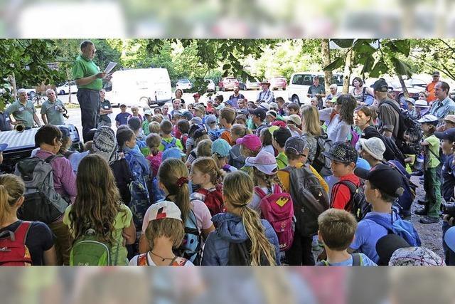 Kinder für den Wald begeistern