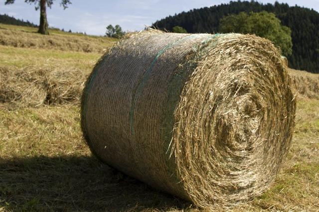 800-Kilo-Heuballen überrollt in Fröhnd einen Landwirt