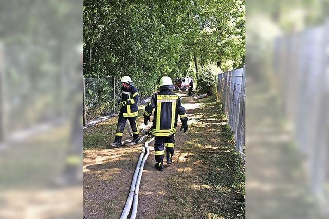 Vegetationsbrand am Freibad in Kollnau