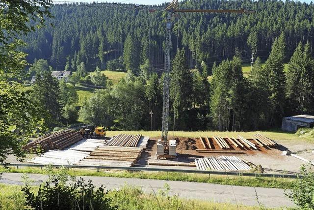 Reichlich Holz für die Blockhäuser