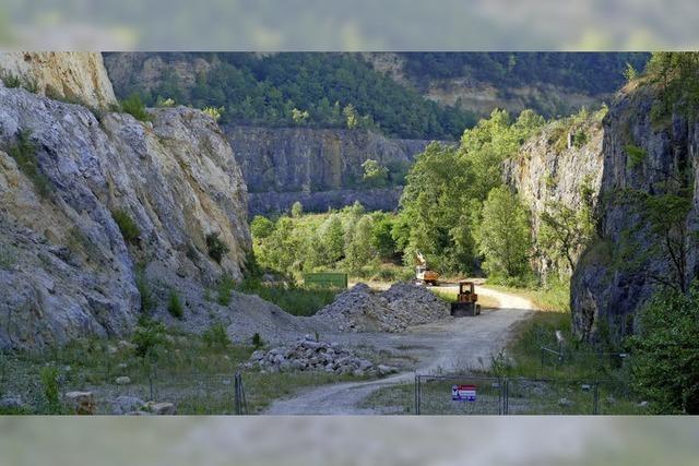 GeG hofft auf Grundstücksverkäufe
