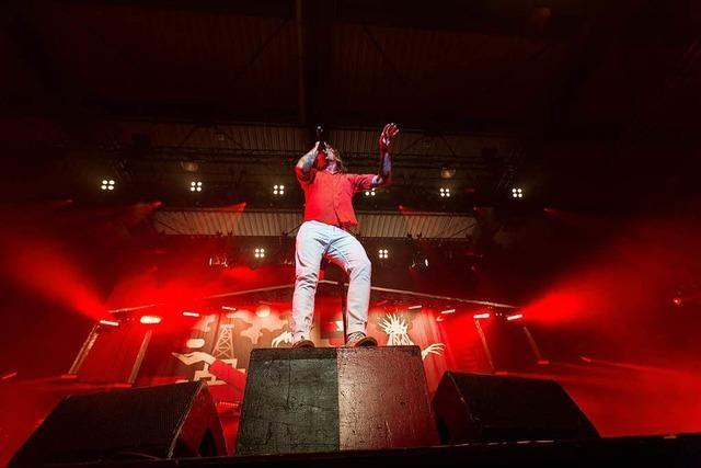 Billy Talent in der Sick-Arena: Band und Fans in Ekstase