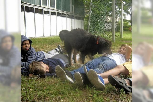 Tierischer Schulbesuch
