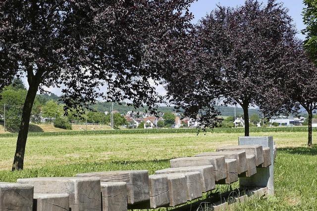 Gemeinderat stimmt fast einstimmig für Kompromiss zur Anschlussunterbringung