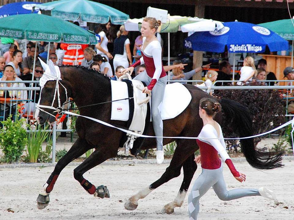 Das Pferd muss lernen vertrauen zu haben, zu turnenden Mädchen auf dem Rücken.    Foto: Maja Tolsdorf