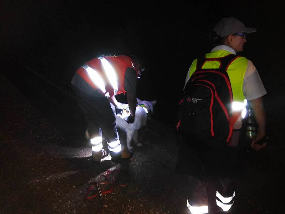 Auch eine Rettungshundestaffel wurde eingesetzt.    Foto: Feuerwehr Rheinau