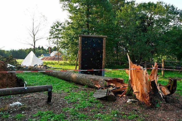 Baum erschlägt 15-Jährigen in Zeltlager bei Rickenbach – unverletzte Teilnehmer sind wieder zu Hause