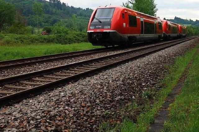 Zugausfall wegen Bäumen auf Gleis