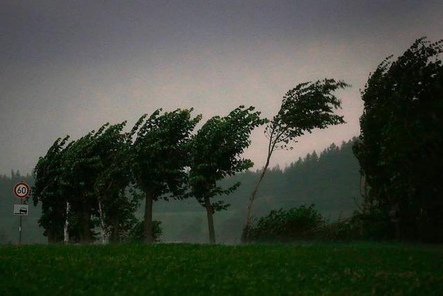 2017 schon mehrere Tote bei Stürmen in Deutschland