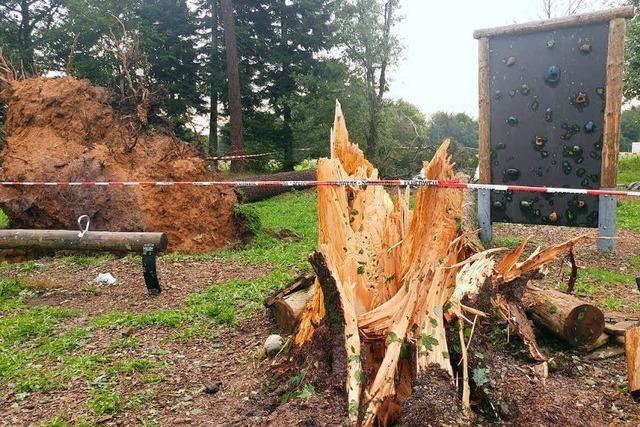 Die Unwetterwarnung kam nur Minuten vor dem Unglück in Rickenbach