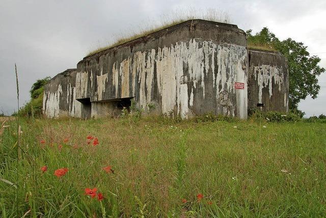 Erlebnisführung mit dem Rad an der Maginot-Linie ins Elsass