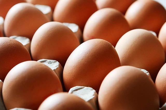 Immer mehr Bundesländer finden verseuchte Eier aus den Niederlanden
