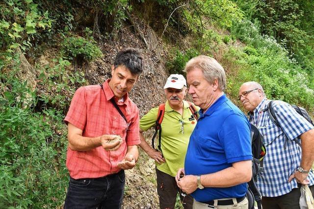 Umweltminister Franz Untersteller besuchte Ihringen