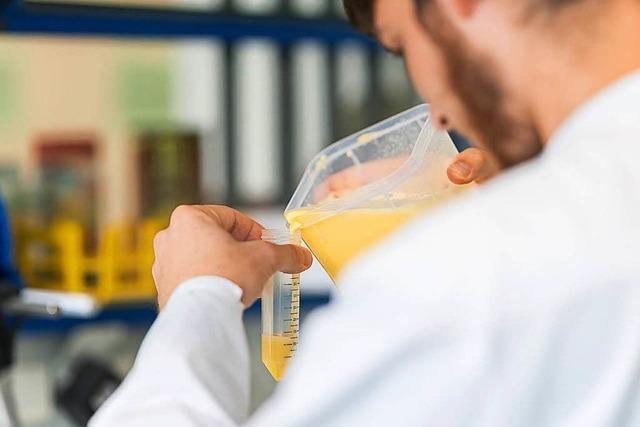 Wie Eier auf das giftige Fipronil getestet werden