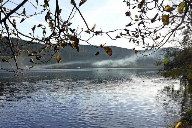 Von den einsamen Seen zum Elsässer Belchen