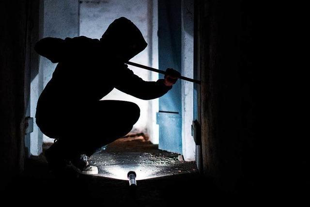 Wieder Schlag gegen Einbrecher gelungen