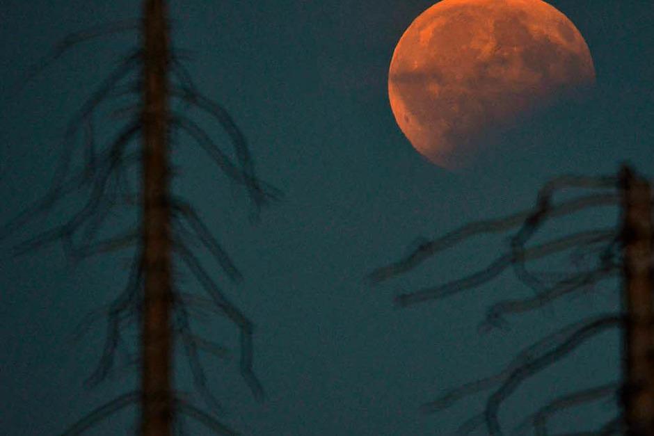 Blick auf die partielle Mondfinsternis  vom Plöckenstein an der österreichisch-tschechischen Grenze. (Foto: dpa)