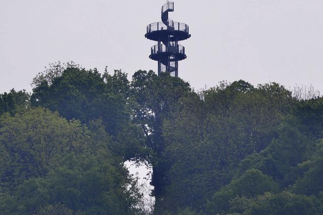 Schlossberg in Freiburg wird laut Gutachten vernachlässigt