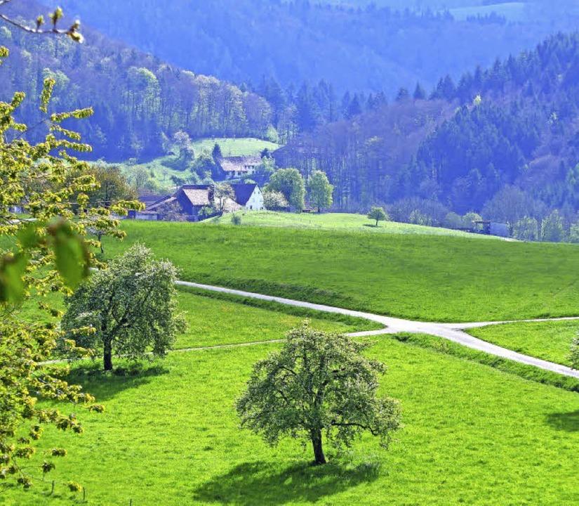 Wunderschön ist die Landschaft  zwisch...e werden im Ortschaftsrat verhandelt.   | Foto: Schmidt