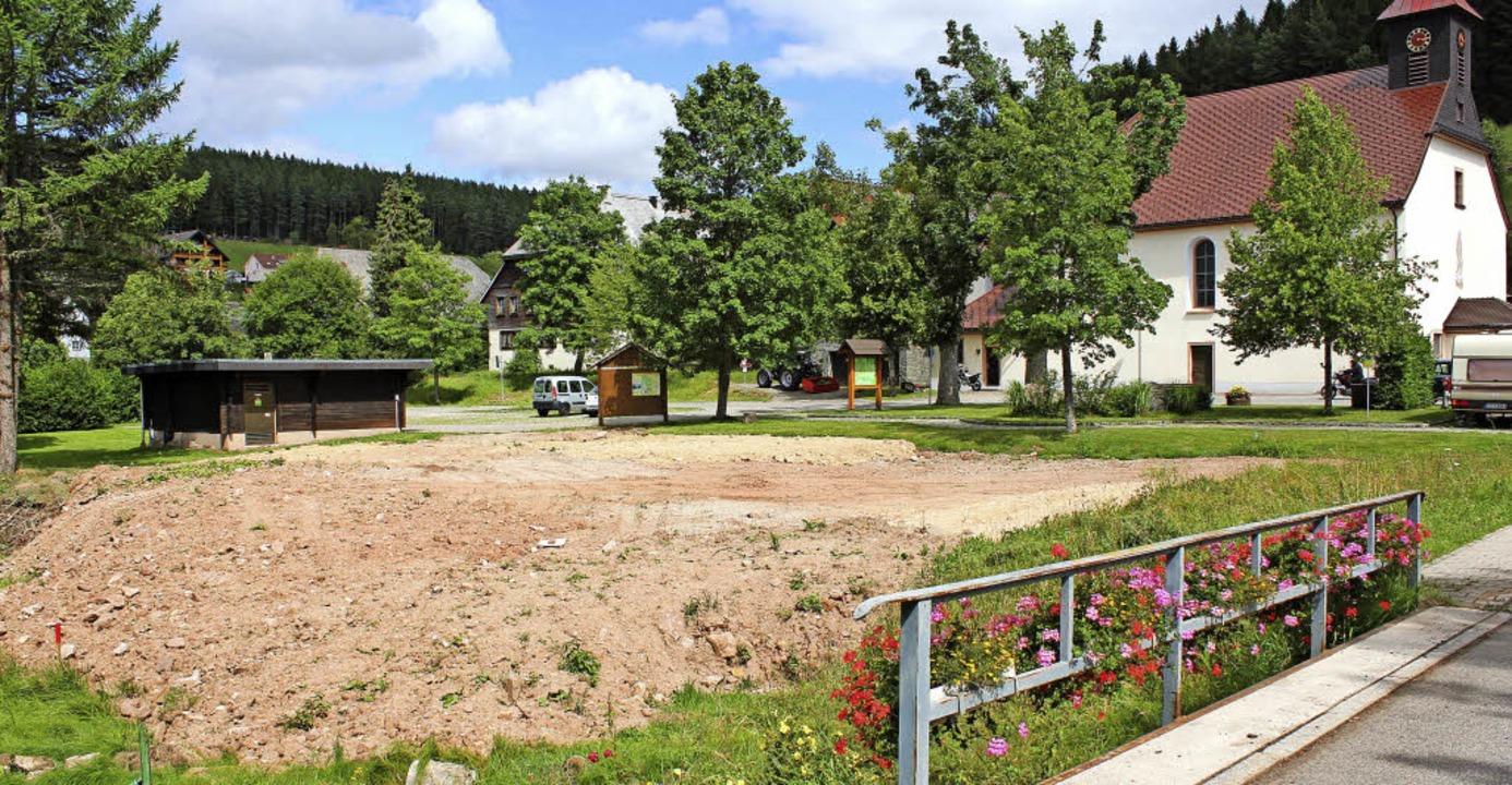 Weil es sich bei dieser Fläche in Bube... am Bubenbach wieder entfernt werden.   | Foto: Gert Brichta