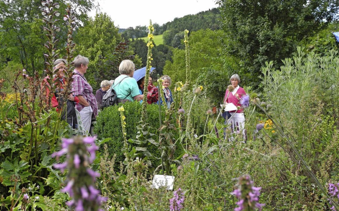 Führung durch den Oberrieder Kräutergarten   | Foto: Sophia Hesser