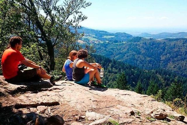 Sechs Wanderungen rund um Freiburg