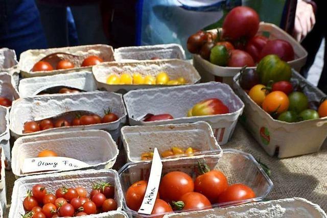Tomatentauschbörse vor dem Stadttheater Freiburg