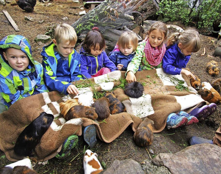 <BZ-FotoAnlauf>Kindergarten berghüsli:...inchen schlossen sie sofort ins Herz.     Foto: Senn/ZVG