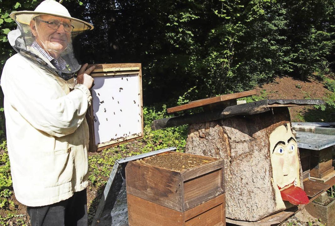 Peter Fritzsche aus Hägelberg ist stol...ie Honigsammlerinnen nicht zu stören.     Foto: Gabriele Poppen