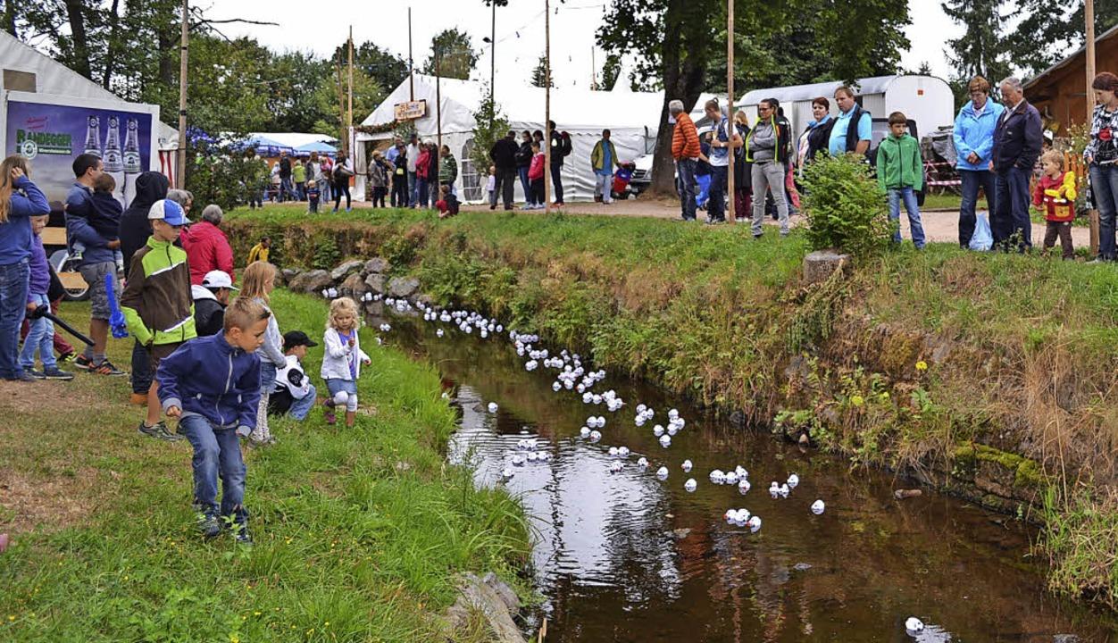 Das Entenrennen ist eine der großen Attraktionen beim Bachfest in Rötenbach.   | Foto: Liane Schilling