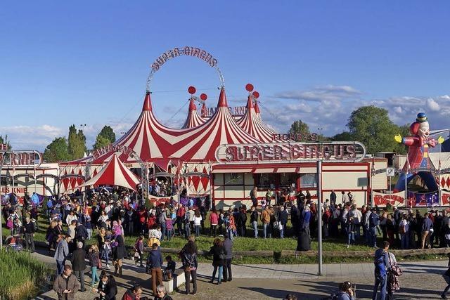 Beim Zirkus Charles Knie zu Gast