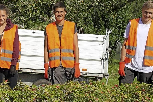 Ferienjobs in Schwimmbad und Bauhof der Stadt Ettenheim sind bei den Jugendlichen beliebt