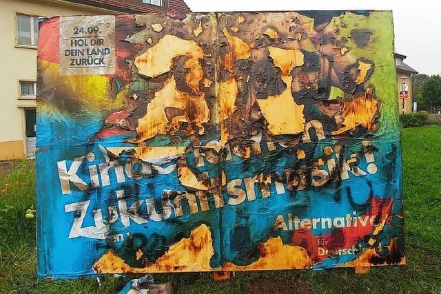 Wahlplakat der AfD angezündet