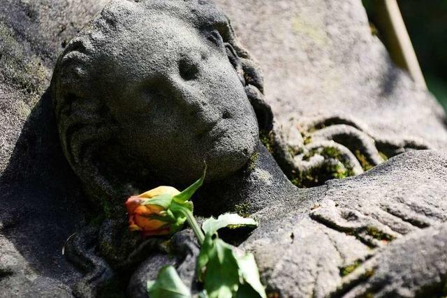 Wer bringt die Blumen zum schlafenden Mädchen aus Stein?