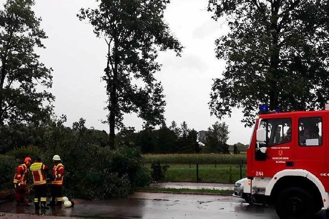 Unwetter verursacht Stromausfall, Bäume stürzen um