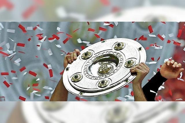 Worauf Fußballer aus dem Elztal sich in der neuen Bundesliga-Saison freuen